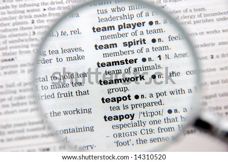 team player definition