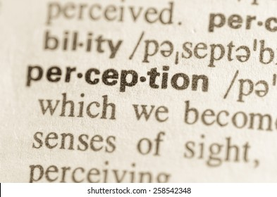 Definition of word perception  in dictionary