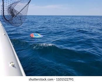 deflated helium birthday balloon floating in blue Lake Michigan