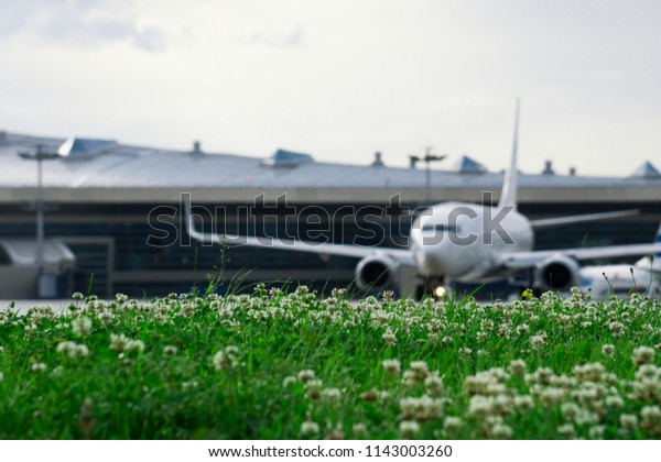 Defocus airplane with green herb at airport in Moscow