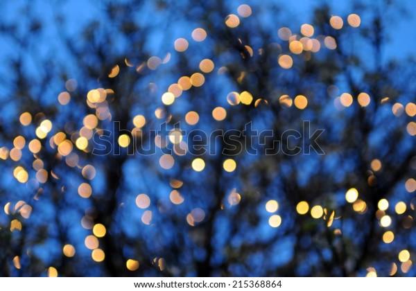 Defocused Lights on a Tree Background