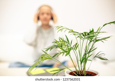 Defocused woman relaxing on couch and listening to music using smart phone and headphones. Home office break on sofa in warm cosy sweater. Focus on a plant.