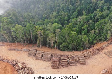 Deforestation. Aerial photo of logging in Malaysia rainforest