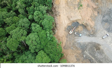 Deforestation aerial photo. Rainforest jungle in Borneo, Malaysia, destroyed to make way for oil palm plantations