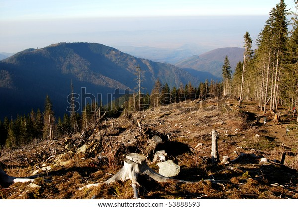 Deforestation in Carpathian Mountains