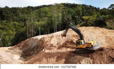 Deforestation. Destruction of Borneo rainforest for palm oil industry.