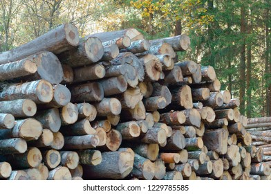 deforestation, deforestation, felled tree trunks, logs stacked on top of each other