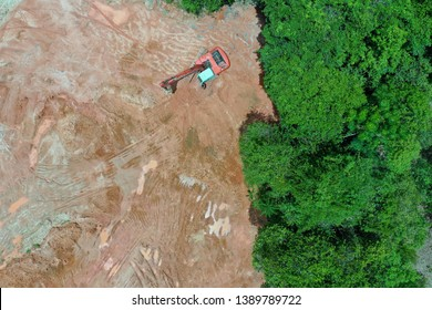 Deforestation. Logging and forestry. Rainforest jungle in Southeast Asia destroyed to make way for palm oil plantations