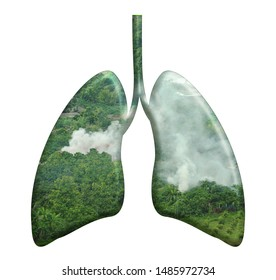 deforestation lungs design forest in lung shape wildfire concept