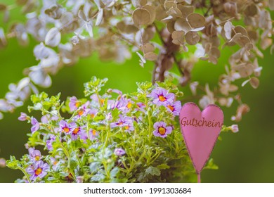 Dekoration with pink flowers Eukalyptus and heart inscription in german Gutschein means in english  coupon