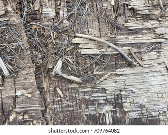 Delapidated peeling wood texture
