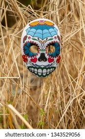 DELCAMBRE, L.A. / USA - MARCH 14, 2019:  Mexican and Spanish Sugar skull painted mask and decoration for the spirits in the tradition of Día de Los Muertos. Day of the dead skull in a sugarcane field.