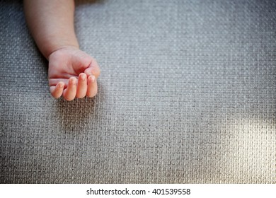 The Delicacy of New Born Baby Hand