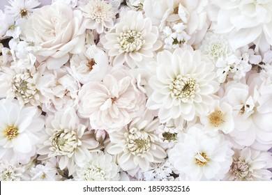 Delikate blühende weiße Blumen, blühende Rosen und dahlischer Hintergrund, Blumenkarte für Hochzeitsstrauß, Ton