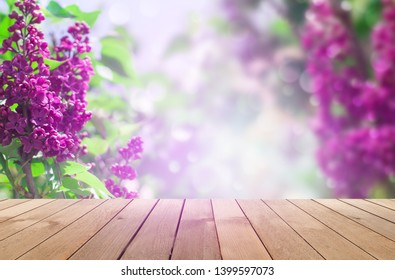 Delicate floral background lilac flowers on a bright sunny day. Blurred lilac floral background. Lilac flowers on wooden table background
