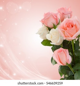 Delicate rose on a light background. Postcard for the wedding. Congratulations to the Happy Valentine's Day.