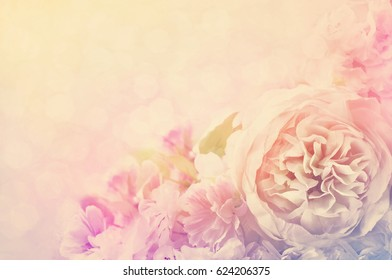 Delicate roses frame, blooming flowers festive background, pastel and soft card, selective focus, toned
