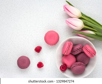 delicate tulips with macaroons on white background