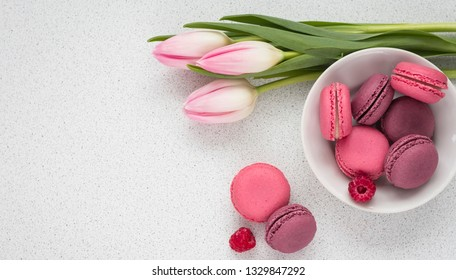 delicate tulips with macaroons on white background with copy space holiday concept