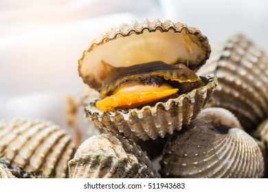 Delicious boiled or steamed cockles(Scallop seafood) food background or menu. shellfish smile. Small. Selective focus.