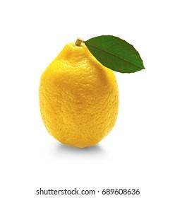 Delicious citrus fruit on white background