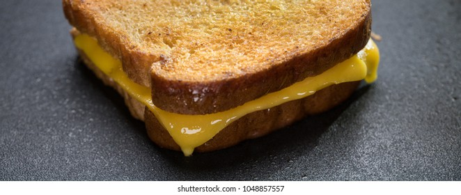 Delicious close-up of a hot grilled cheese sandwich panorama.