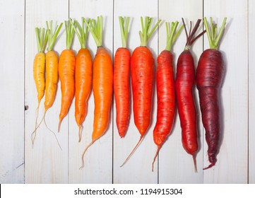 Delicious color carrot on the wooden table