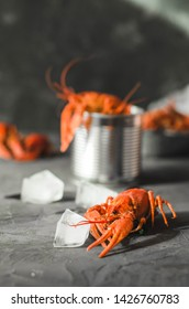Delicious crayfish with ice on the dark background.