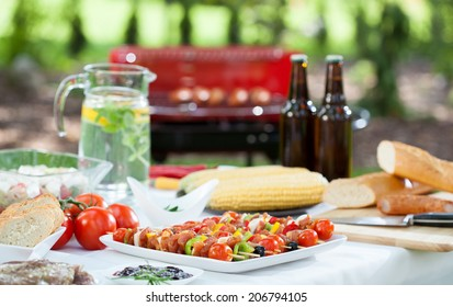 A lot of delicious food and drinks before barbecue garden party
