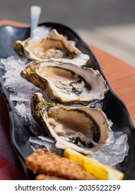 Delicious fresh oysters chilled on ice