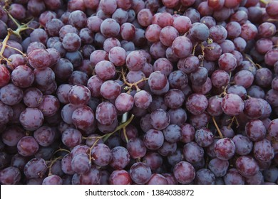 A lot of delicious grapes at the market. Fruit background. Organic and healthy.