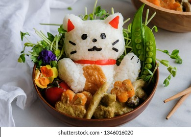 Delicious homemade Japanese meal / Maneki-neko Animated Shaped Onigiri with Thai Vegan Green Curry / Fun and interesting to cook and decorate with family members and enjoying the meal after