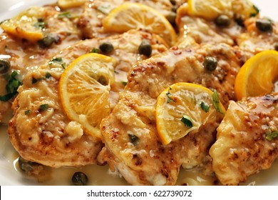 Delicious Italian chicken piccata with lemon slices, closeup