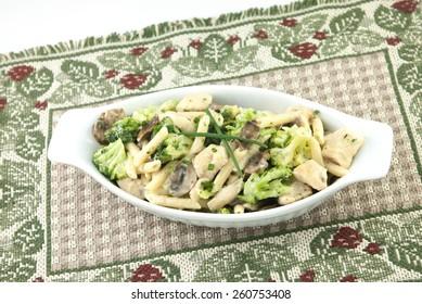 A delicious Italian meal, chicken pasta primavera, with chicken, broccoli, penne pasta, mushrooms in a creamy alfredo sauce