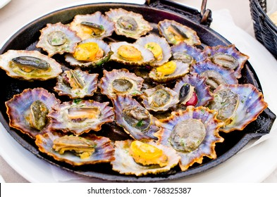 Delicious limpets fried on the pan