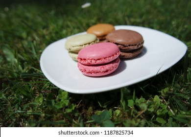 Delicious little macrons on the white plate