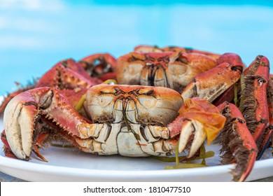 Delicious mangroves cooked crabs  .