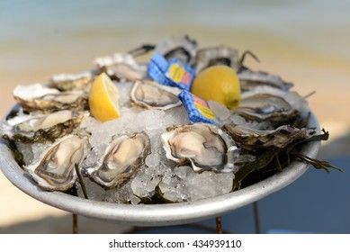 Delicious oysters in a beach cafe in France
