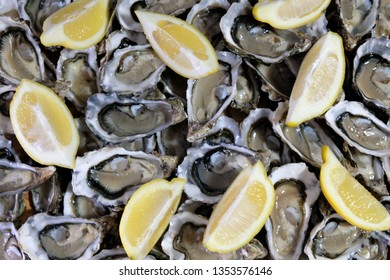 Delicious plate of French oysters with slices of lemon