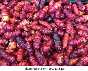 Delicious red New Zealand yams Oxalis tuberosa Oka exotic plants root vegetable tuber healthy organic food