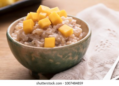 Delicious rice pudding in bowl topped with fresh mango.