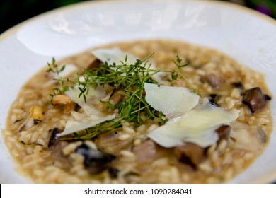 Delicious rice with truffle oil, Messenian gruyere and rosemary, risotto.