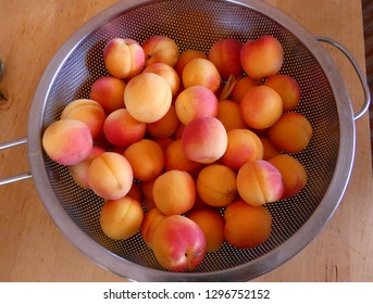 Delicious ripe apricots in metal colander or sieve