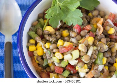 Delicious salad of lentils, vegetables and seafood