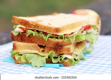 Delicious sandwich and some apples on a napkin