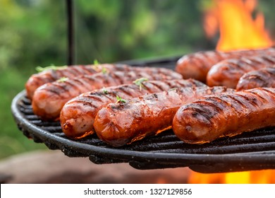 Delicious sausage on grill with spices and herbs