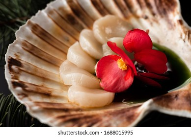 delicious scallop in a shell on a black background