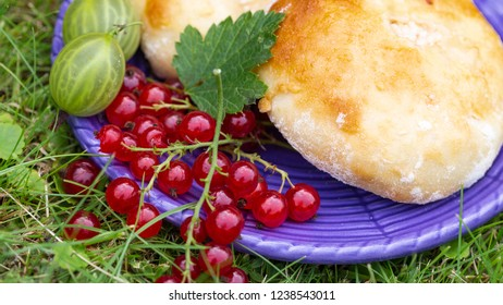 delicious sweet fresh tarts - cheesecakes on a blue plate with red currant berries on the green grass outdoors in summer