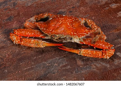 Delicous Boiled crab - ready for eat