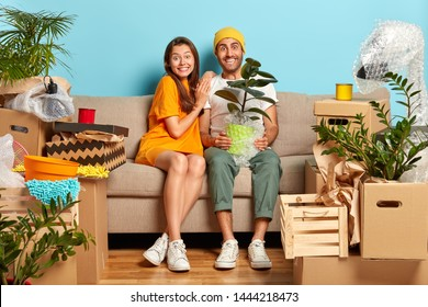 Delighted married couple purchased new apartment, plan future, unpack personal stuff sit on comfortable sofa man holds wrapped houseplant in pot prepare for housewarming party. First flat for newlywed